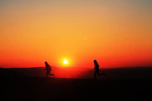Run to the Sun by Tom Hard
