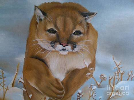 Run Winter Cougar  by Rebecca Christine Cardenas
