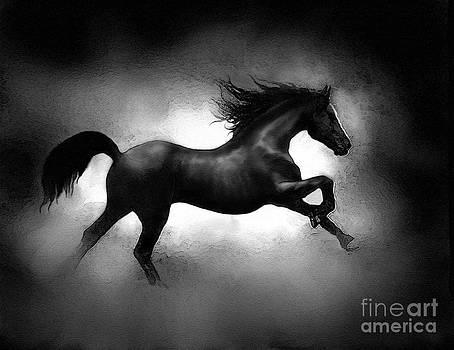 Running Horse by Robert Foster
