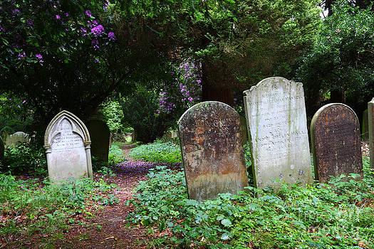 James Brunker - Rural Cemetery Pathway