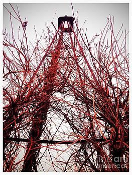 Rural Eiffel  by Garren Zanker