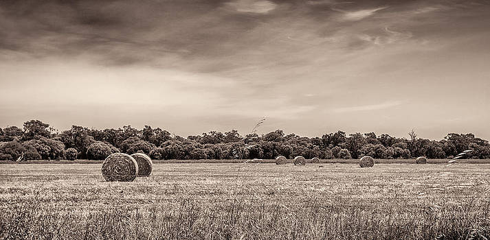 Rural Land by Shari Mattox