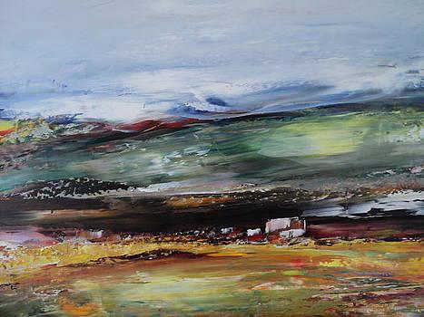 Rural Landscape by Nelu Gradeanu