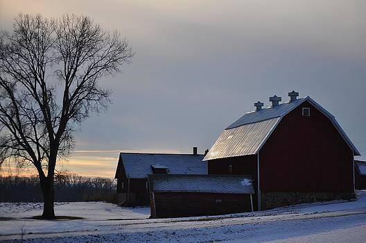 Rural Sunset by D Nigon