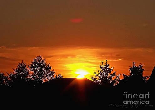 Gena Weiser - Rural Sunset
