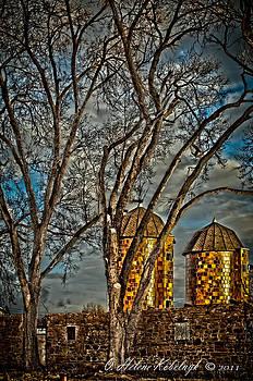 Rural Twin Towers by Helene Kobelnyk