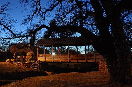 Rusch Park Sacramento by Mischelle Lorenzen