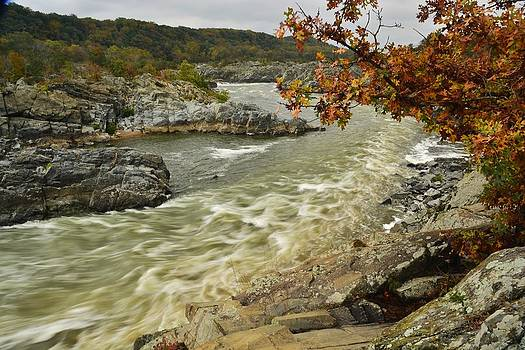Rushing River by Terry Everson