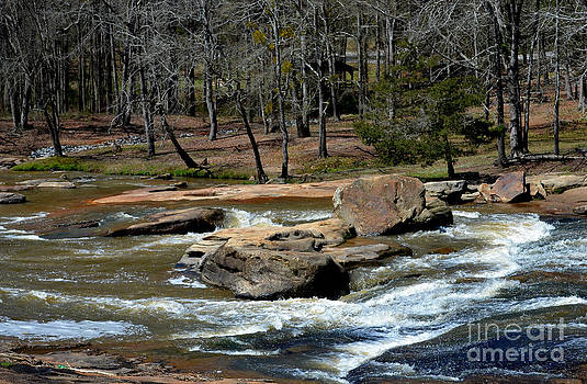 Rushing Water in the Spring by Eva Thomas