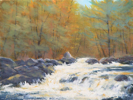 Rushing Water On The Fall River by Kenneth Shanika