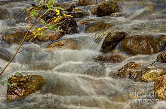 Bob Hislop - Rushing Waters