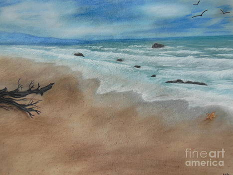 Rushing waves on shore by Nicole Poston