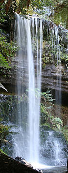 Russel Falls 2 by Carl Koenig