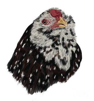 Russian Orloff Rooster by Leigh Schilling
