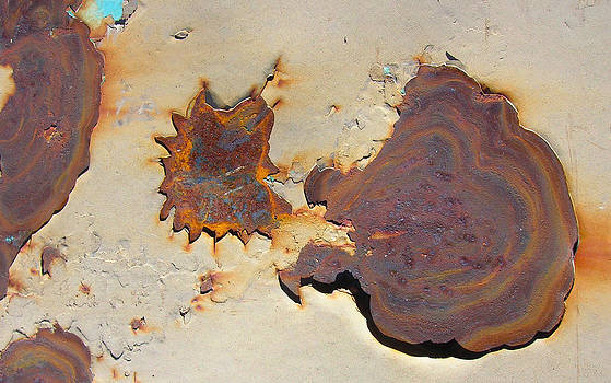 Rust #1 by Susan Porter
