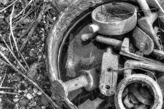 Fizzy Image - rust 2
