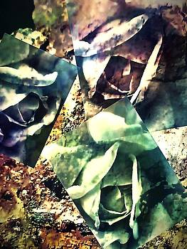 Rust an Roses by  Jeff Mantz Rhodes