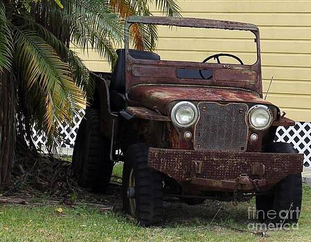 Rust Jeep by Theresa Willingham