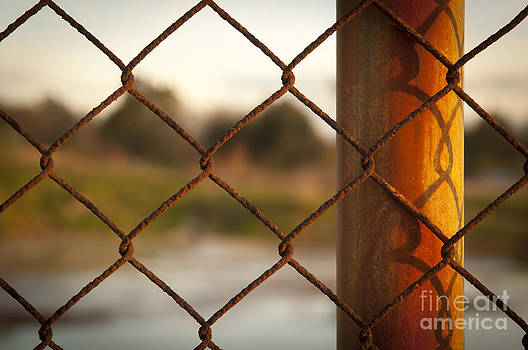 Tim Hester - Rusted Fence