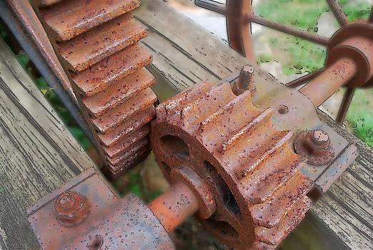 Rusted Gears by Ricardo  De Almeida