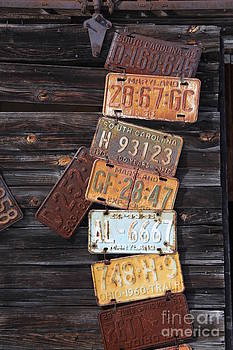 Rusted USA by Diane Greco-Lesser