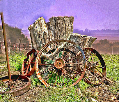 Terry Shoemaker - Rusted Wheels on the Farm