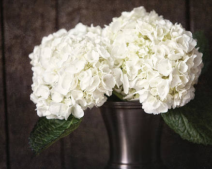 Lisa Russo - Rustic Hydrangea in a Bronze Vase with Barnwood