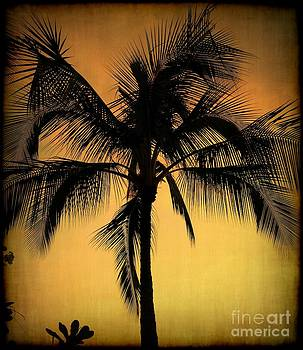 Rustic Palm Tree by Lisa Cortez