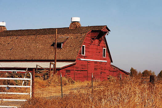 Art Block Collections - Rustic Red Barn