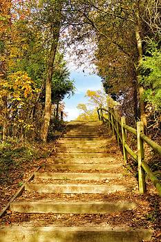 Rustic Stairway by Jean Goodwin Brooks