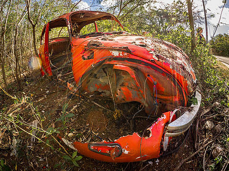 Rusty Beetle by Carl Engman