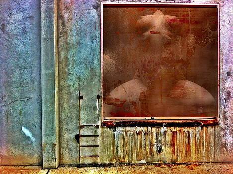 Rusty Wall 1 by Andrea Kollo