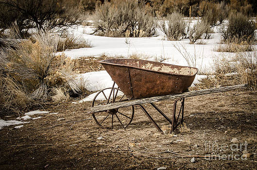 Rusty Wheelbarrow by Sue Smith