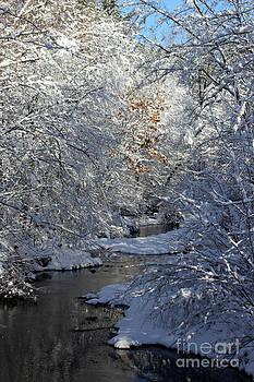 Saco River New Hampshire by Spirit Baker