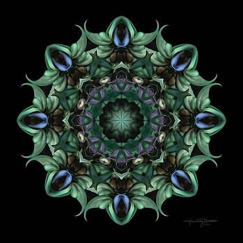 Sacred Aspects - Divine Feminine by Karen Casey-Smith