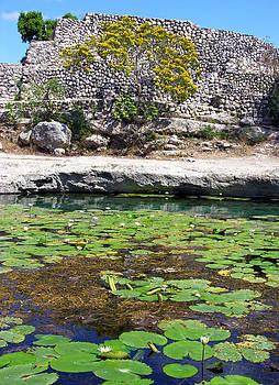 Ramunas Bruzas - Sacred Waters