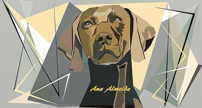 Sad Dog by Ana Almeida