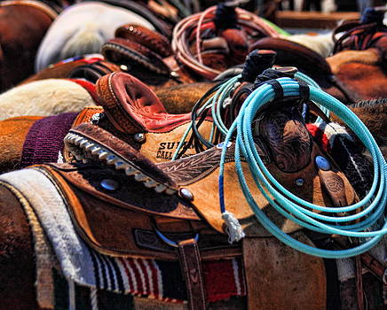 Saddle Up by Gene Praag