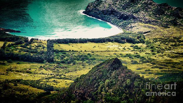 Charles Davis - Safarie Helicopters Kauai 2