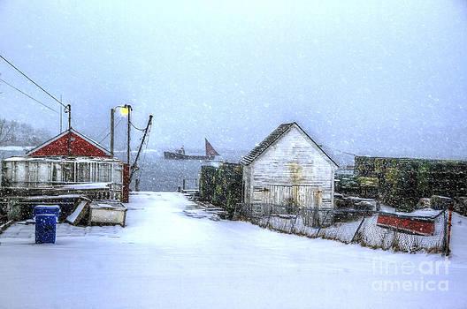 Brenda Giasson - Safe Harbor Maine