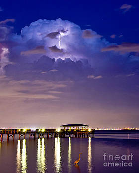 Safety Harbor Pier Illuminated by Stephen Whalen