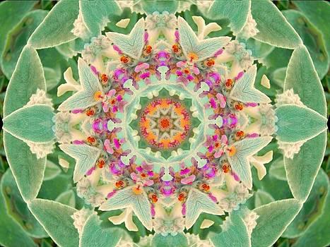 Sage Flower Mandala by Diane Lynn Hix