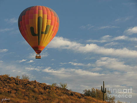 Saguaro Fly Over by Jessica Boone