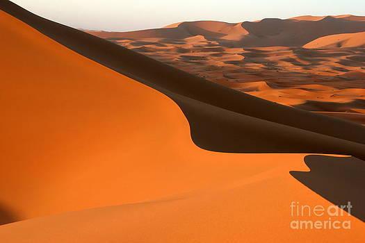 Sahara Desert Dune by Arie Arik Chen