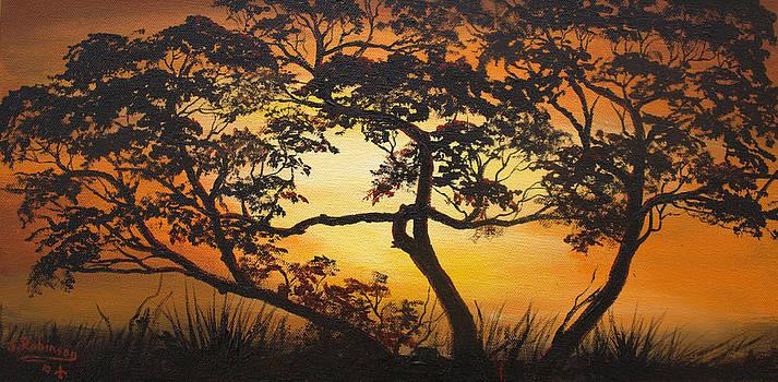 Saharan Sunrise by Julia Robinson