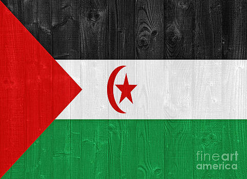 Sahrawi flag by Luis Alvarenga