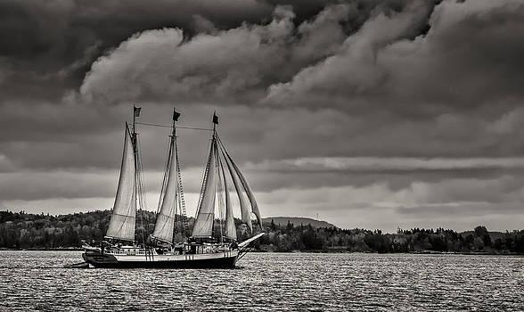 Sail Away by Fred LeBlanc