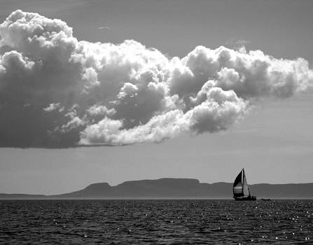 Sail Away in Grey by Nicole Daniels