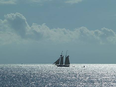 Sail Away by Patricia McKay