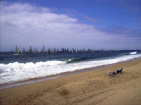 Sail Boats by Robbie Clayton